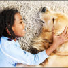 Pet Odor Treatment & Cleaning