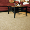 Specialty & Custom Carpet Cleaning