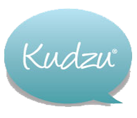 Kudzu Cleaning Review